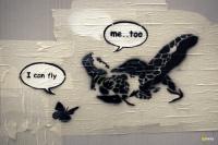 27_fly750.jpg