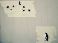 27_penguin700.jpg
