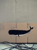 27_whale550.jpg